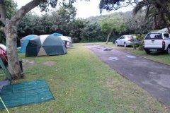 WAG Camp Bazley